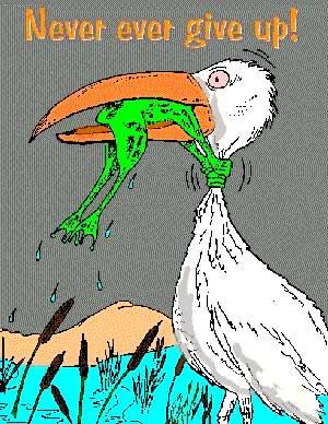 Frog struggle a bird.