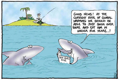Sharks come up with a practical plan with the help of global warming.