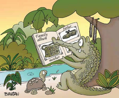 This is the family album of a crocodile.