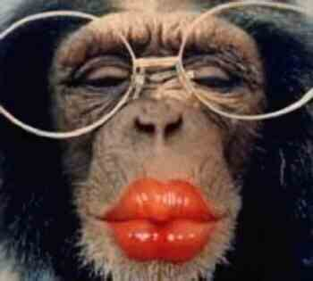 Give this monkey a big red kiss.