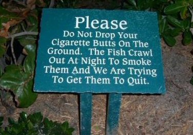 Funny sign relating smoking with fishes.